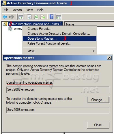 domain naming master role